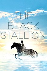 Thumbnail for The Black Stallion (1979)