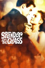 Thumbnail for Splendor in the Grass (1961)