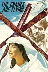 Thumbnail for The Cranes Are Flying (1957)