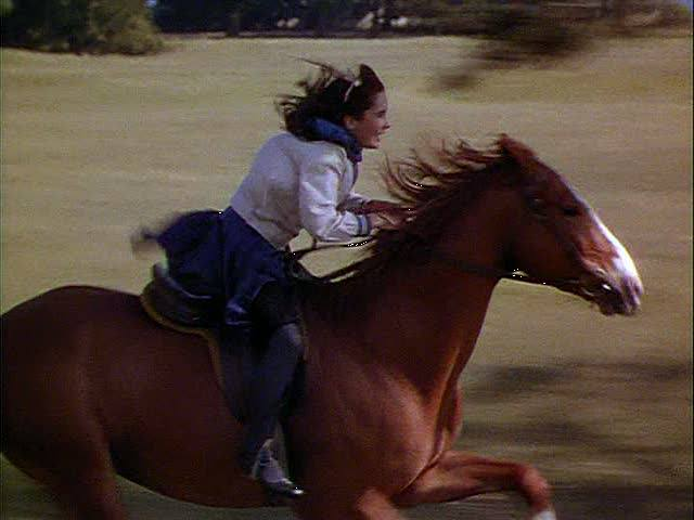 Young Elizabeth Taylor at full gallop